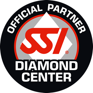 SSI LOGO Diamond Center 320