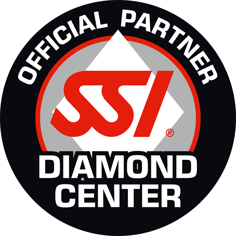 SSI Diamond Center
